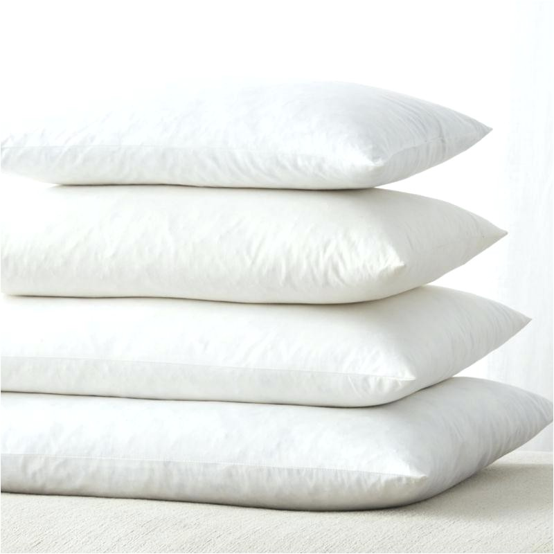 down pillow insert x 3 feather 5 xx3 box edge square quality and decorative throw inserts 18x18