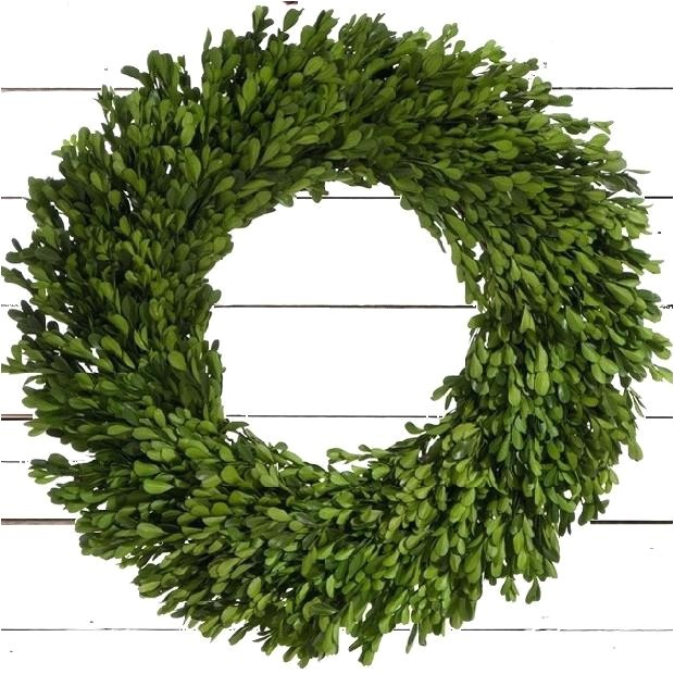 6 Inch Preserved Boxwood Wreath wholesale Large Boxwood Wreath Preserved Boxwood Wreath Large Faux