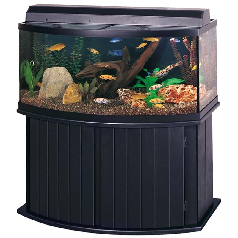 72 Gallon Bow Front Aquarium Stand Aqueon 72 Gallon Pine Bow Front Rectangular Aquarium Stand