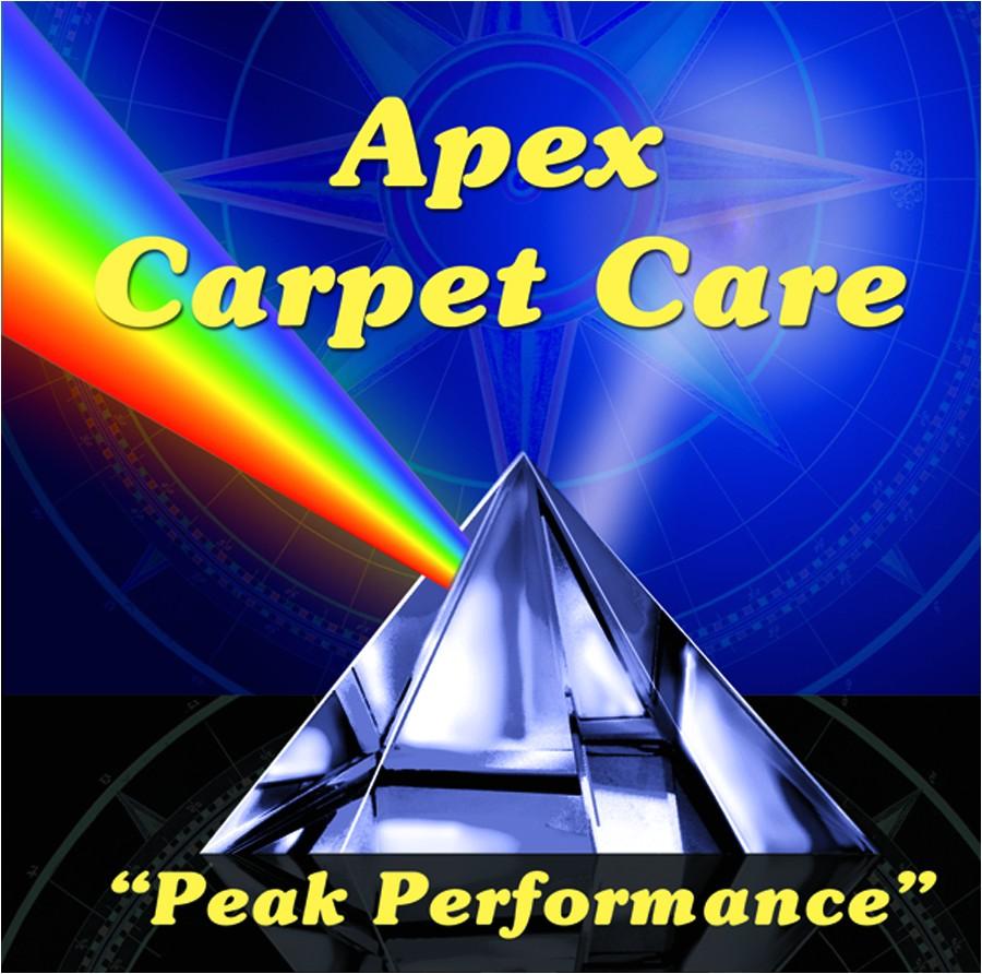 Apex Carpet Cleaning Summerville Sc Adinaporter