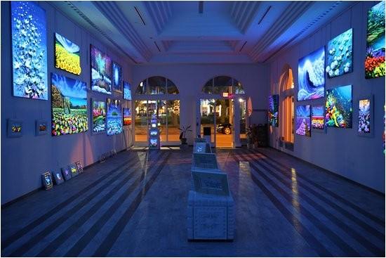 attraction review g34618 d10498904 reviews massimo meda art gallery sarasota florida