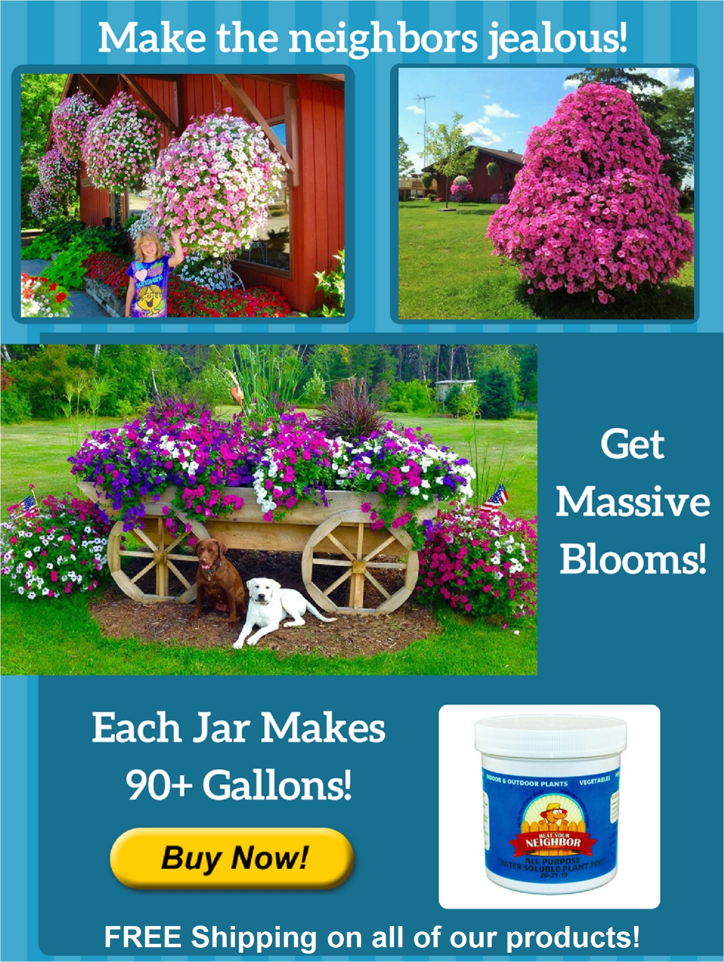 Beat Your Neighbor Plant Food and Fertilizer Home for Beat Your Neighbor Plant Food Fertilizer My Garden
