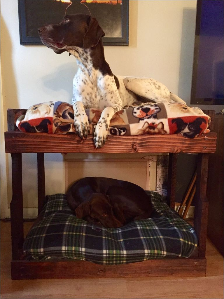 amazing dog bed drawer how to make a dog bed out of a dresser d342d981ef32cee3