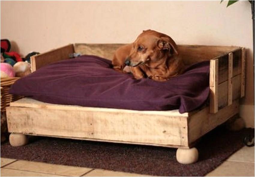 diy pallet dog bed ideas make at home