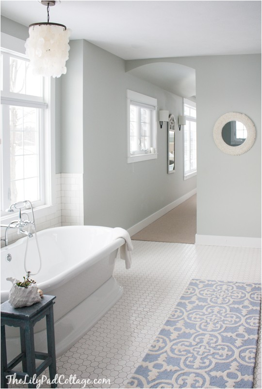 Benjamin Moore Arctic Gray Master Bathroom Decor the Lilypad Cottage