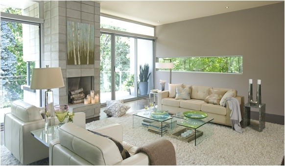 Benjamin Moore Willow Creek Color Gray Paint Contemporary Living Room Benjamin Moore