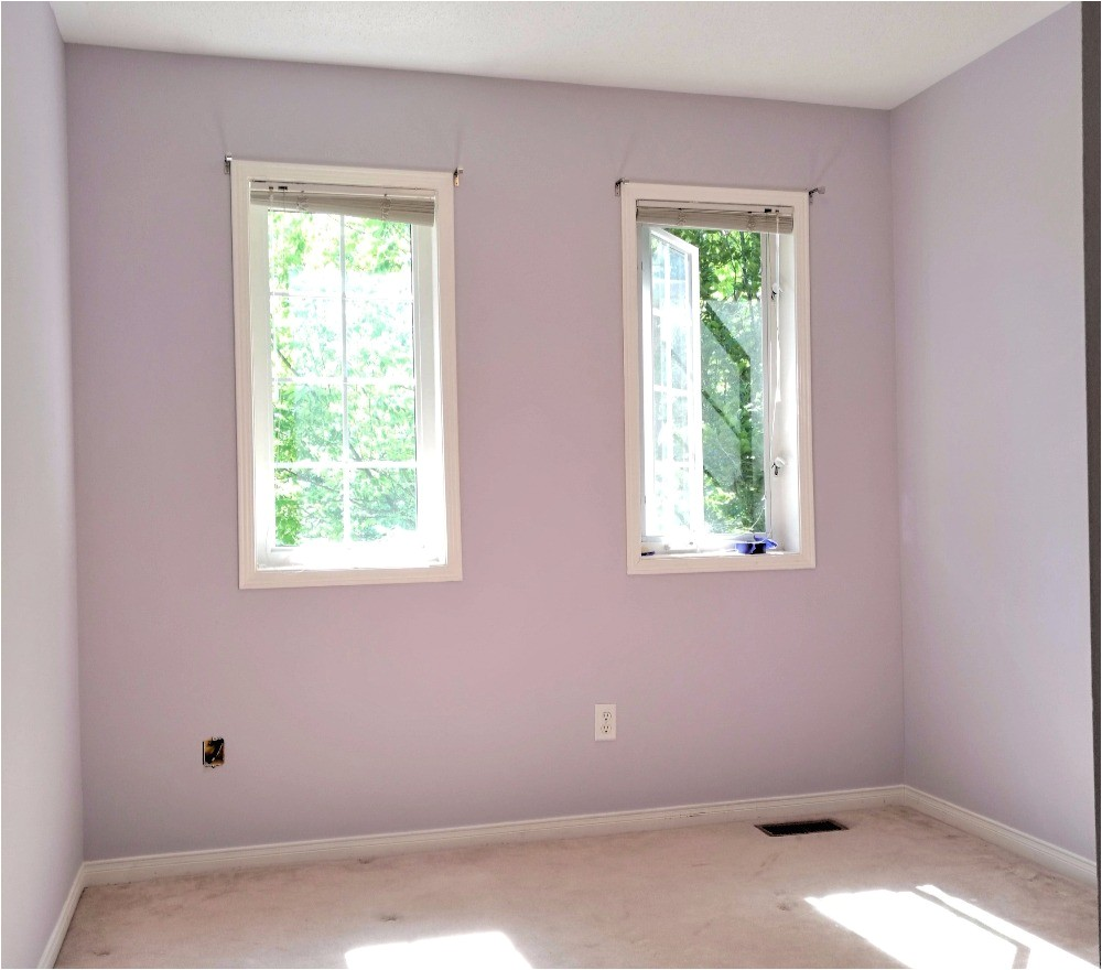 popular benjamin moore sherwin williams paint colors grays