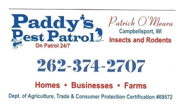 pest patrol pest patrol abolish those aphids pest patrol taylor tx