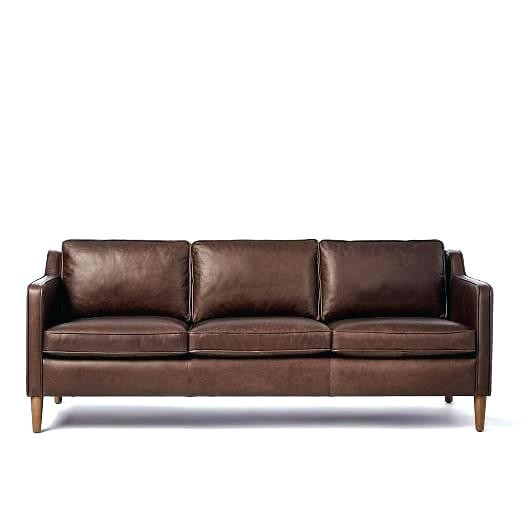 best type of leather sofa for dogs