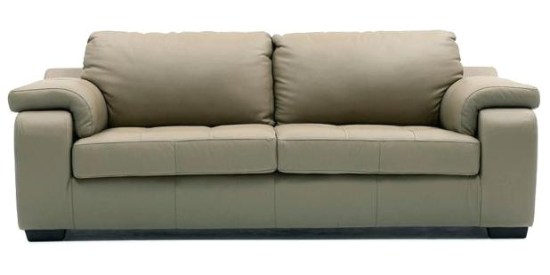 Best Type Of Leather sofa for Dogs Best Type Of Leather sofa for Dogs Www Gradschoolfairs Com