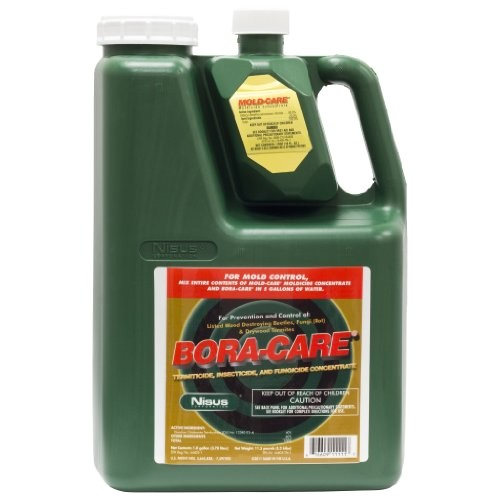 bora care with mold care 1 gallon 608794