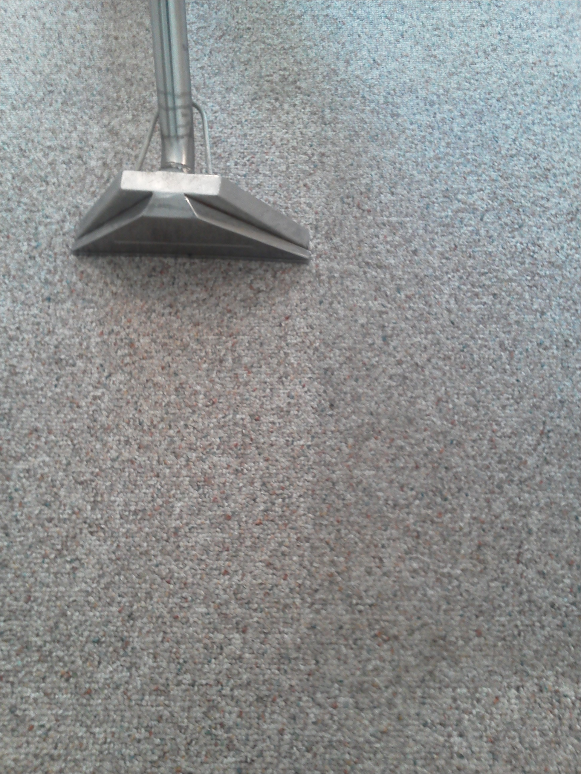 carpet cleaners in stafford