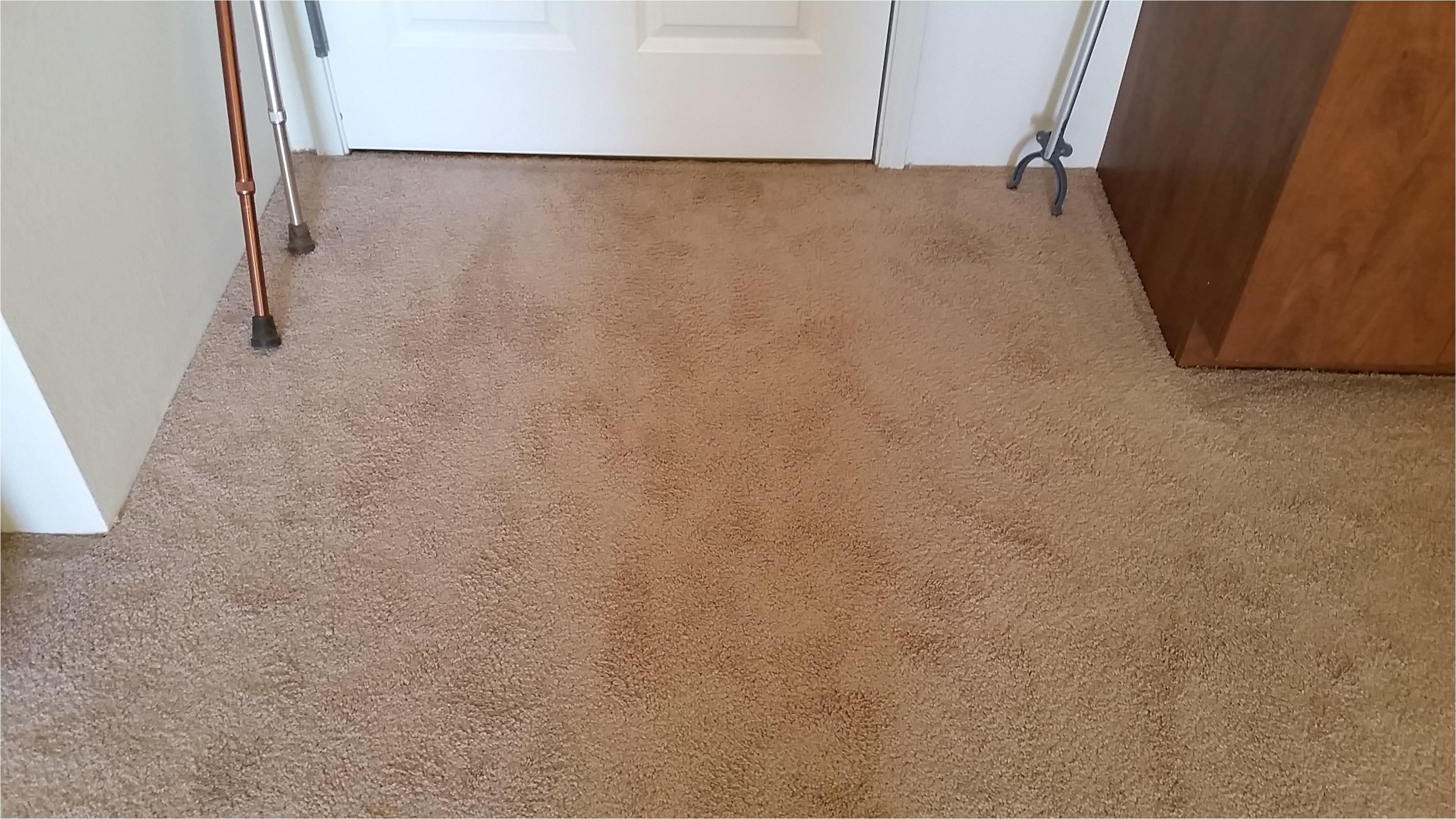 Carpet Cleaning In Rio Rancho Rio Rancho Carpet Cleaning Carpet Repair Cleaning