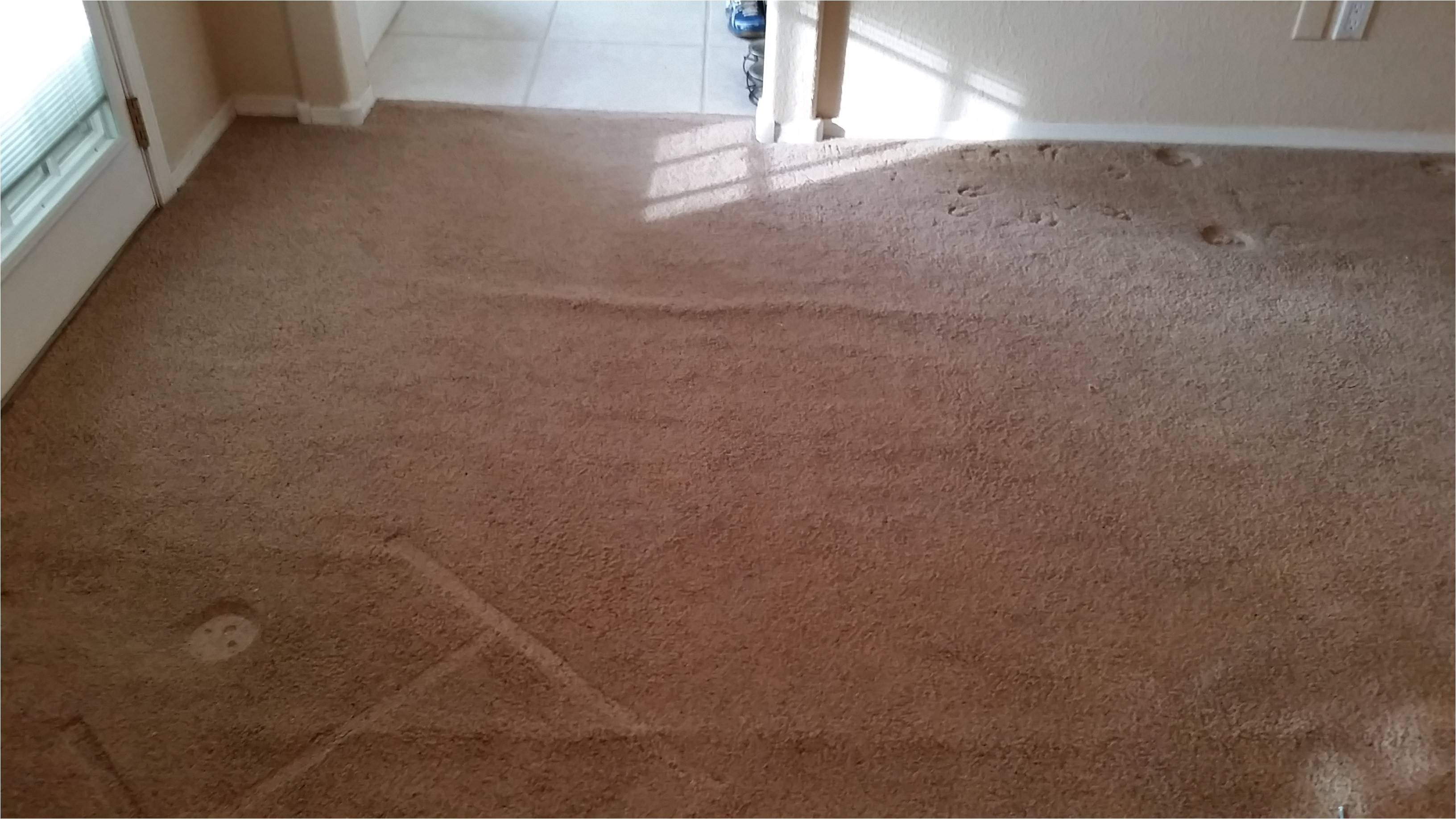 rio rancho carpet restretch