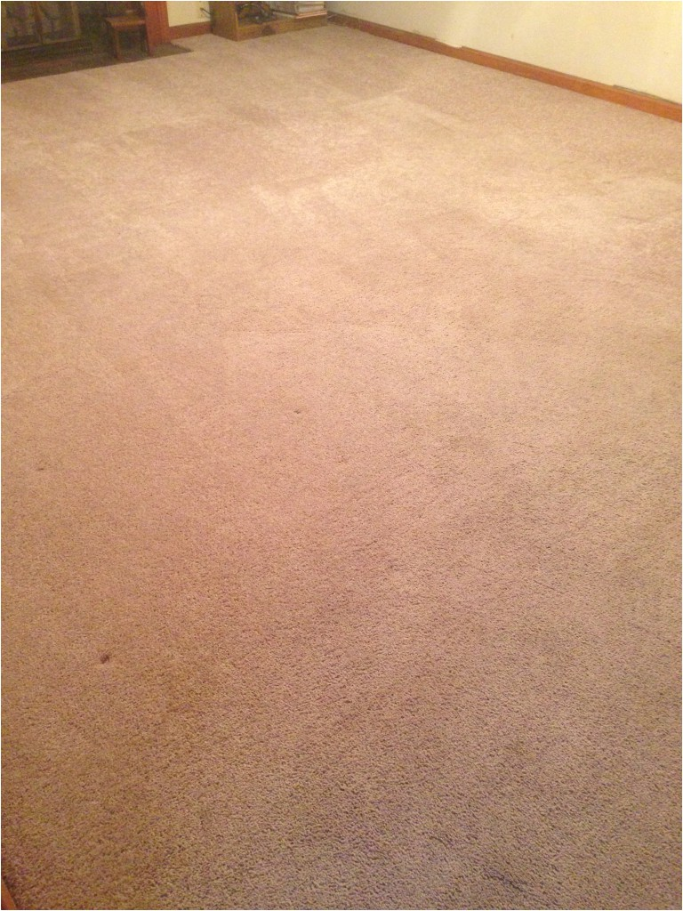 Carpet Cleaning Stafford Va Carpet Cleaning and Expert Stains Removal Fredericksburg