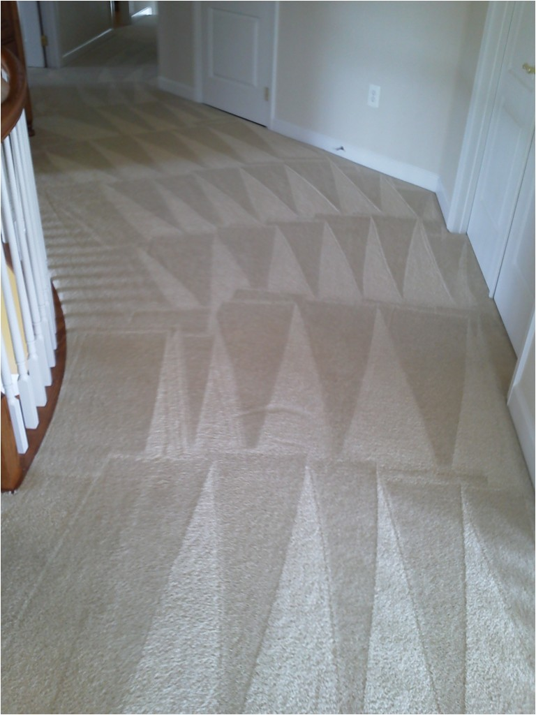 stafford carpet cleaning pros