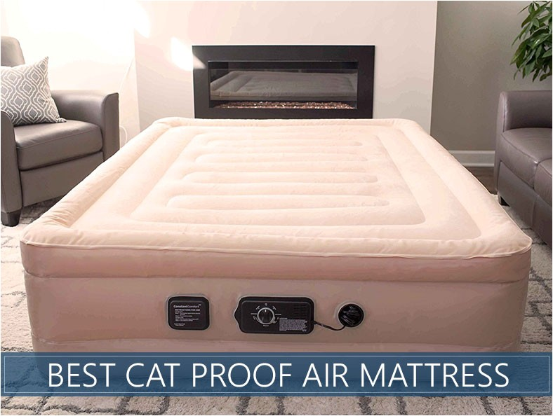 Cat Proof Air Mattress Best Cat Puncture Proof Air Mattresses Updated Reviews
