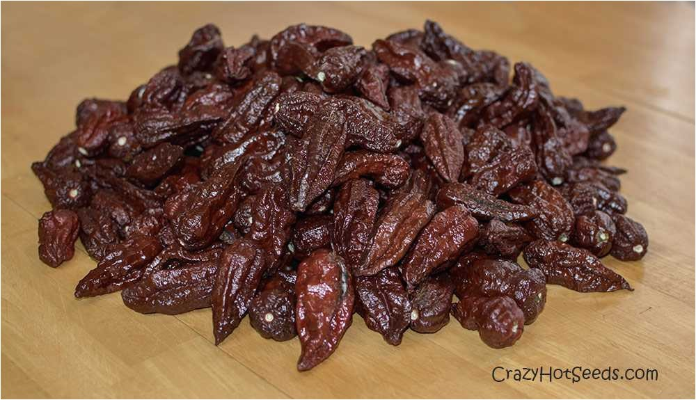 Chocolate Bhutlah for Sale Chocolate Bhutlay Peppers