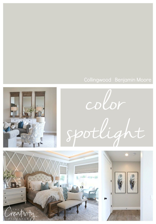 benjamin moore collingwood color spotlight