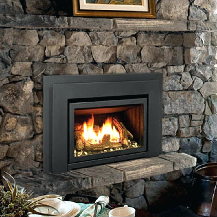 enviro gas stove