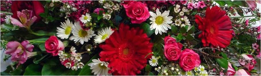 florist highlands ranch info