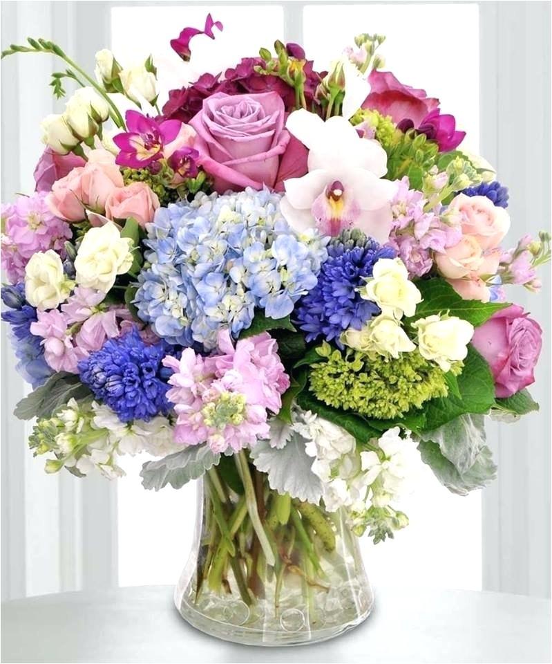 Flowers and Such Adrian Mi Flowers and Such Adrian Mi Miamalkova Club