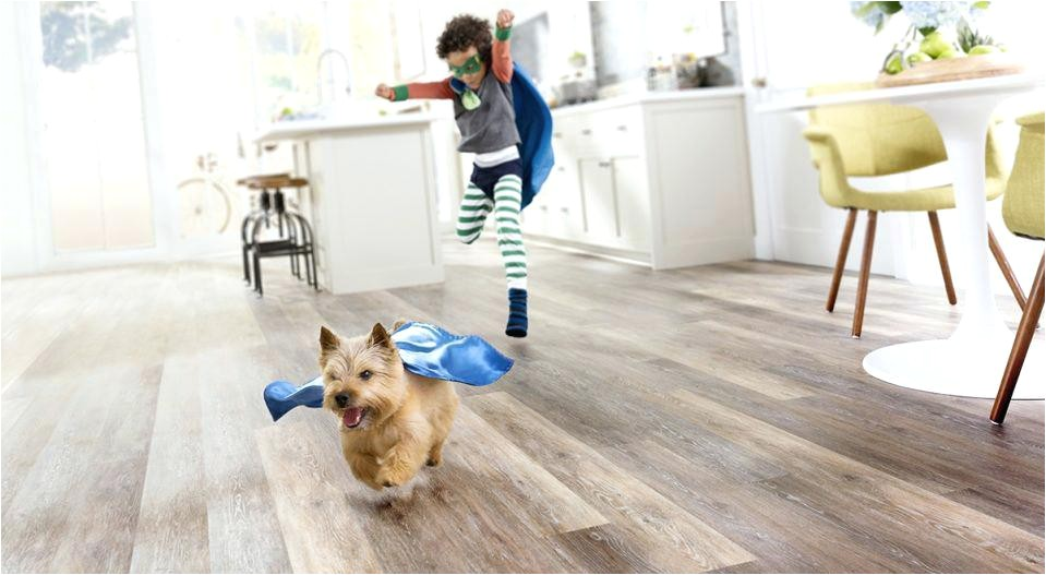 best hardwood floors for large dogs