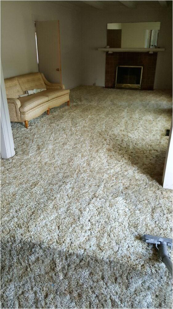 high performance carpet cleaning yuba city 2 select cff0hqyhkqvptyopkdrqjg