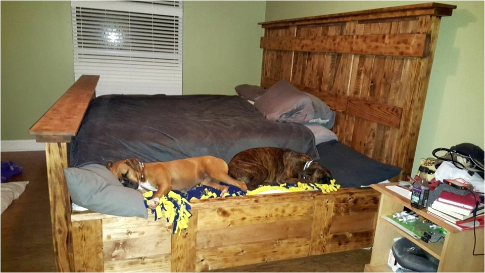 King Bed with Doggie Insert Handmade King Size Bed Designed to Lodge Your Furry Friends