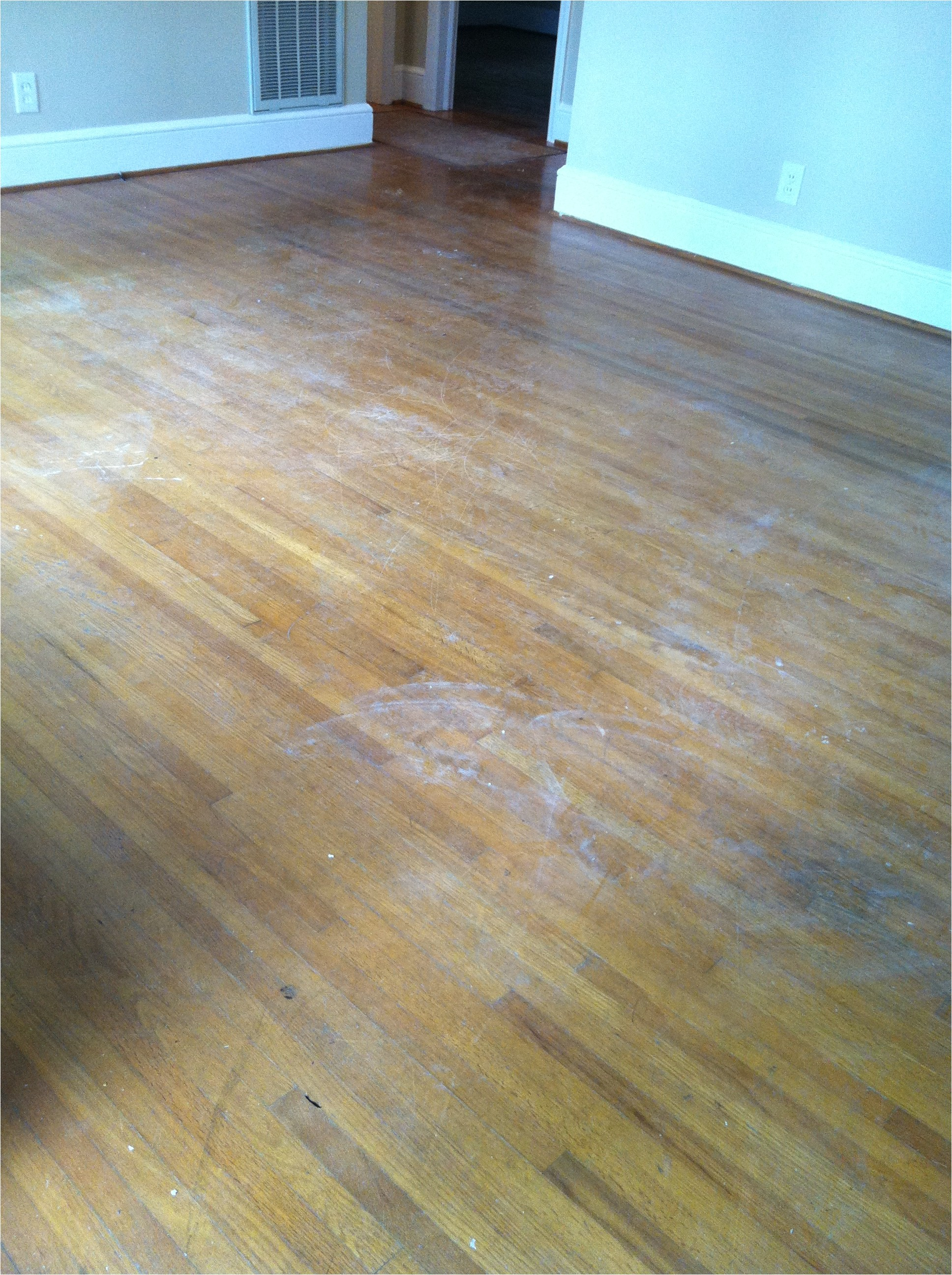 How To Clean A Hardwood Floor With Dogs Urine On It