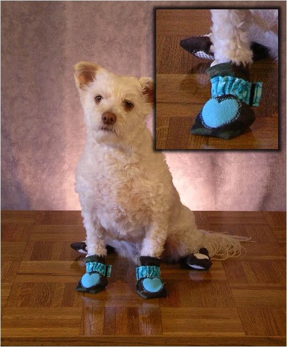 best dog booties for hardwood floors