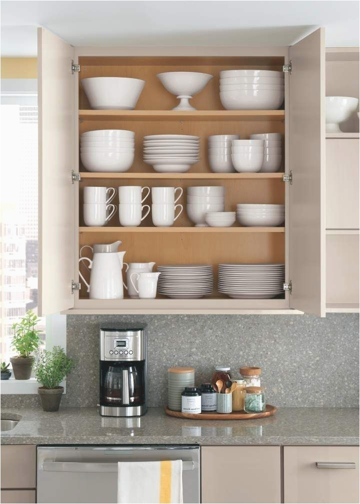 lining kitchen cabinets martha stewart the most 162 best organizing your kitchen images on pinterest