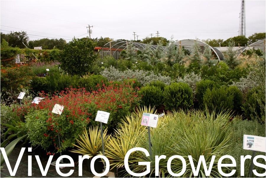 plant nursery wholesale