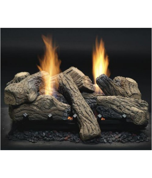 monessen natural blaze vented see thru gas log set with burner