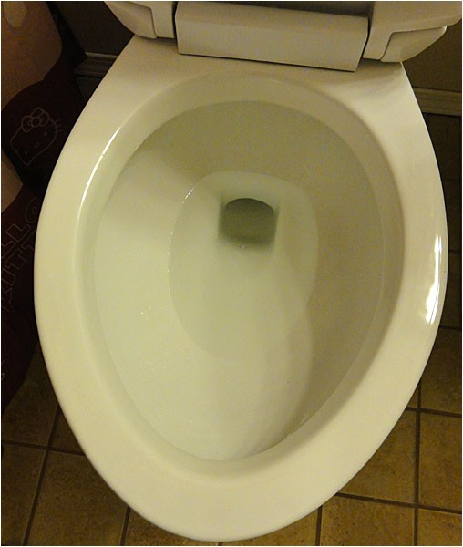 niagara n7717 stealth toilet review with pictures and comments 49930
