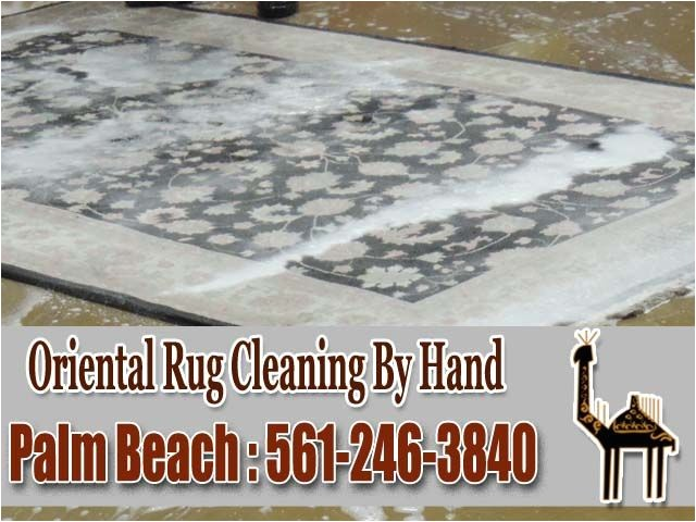 coit rug cleaning boca raton
