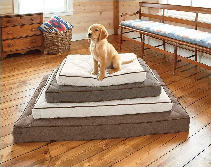 orvis airfoam platform dog bed orvis airfoam platform dog bed 738f94b7a4ab46f0