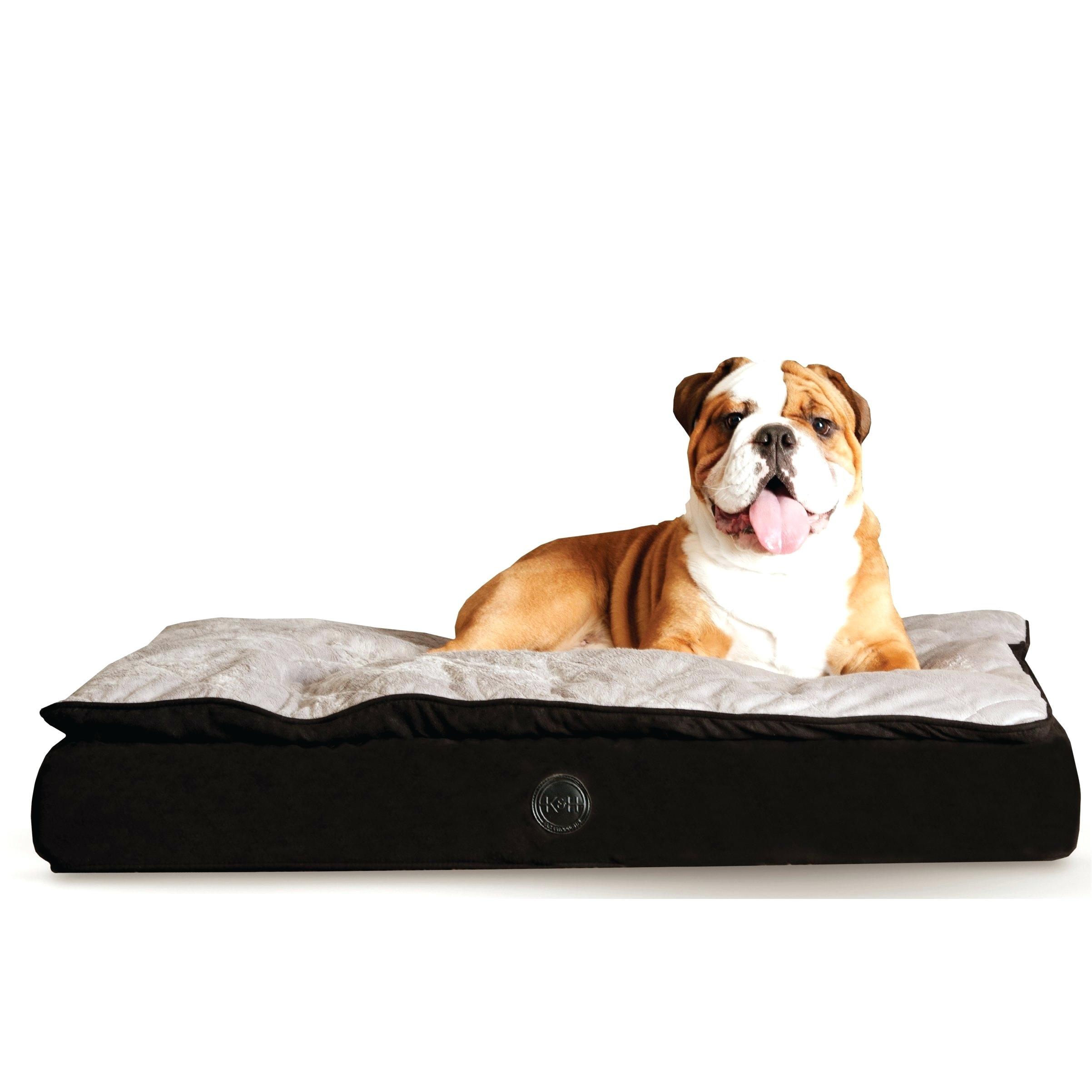 orvis bedside platform dog beds diy no sew dog bed tutorial 290e5f71b813d738