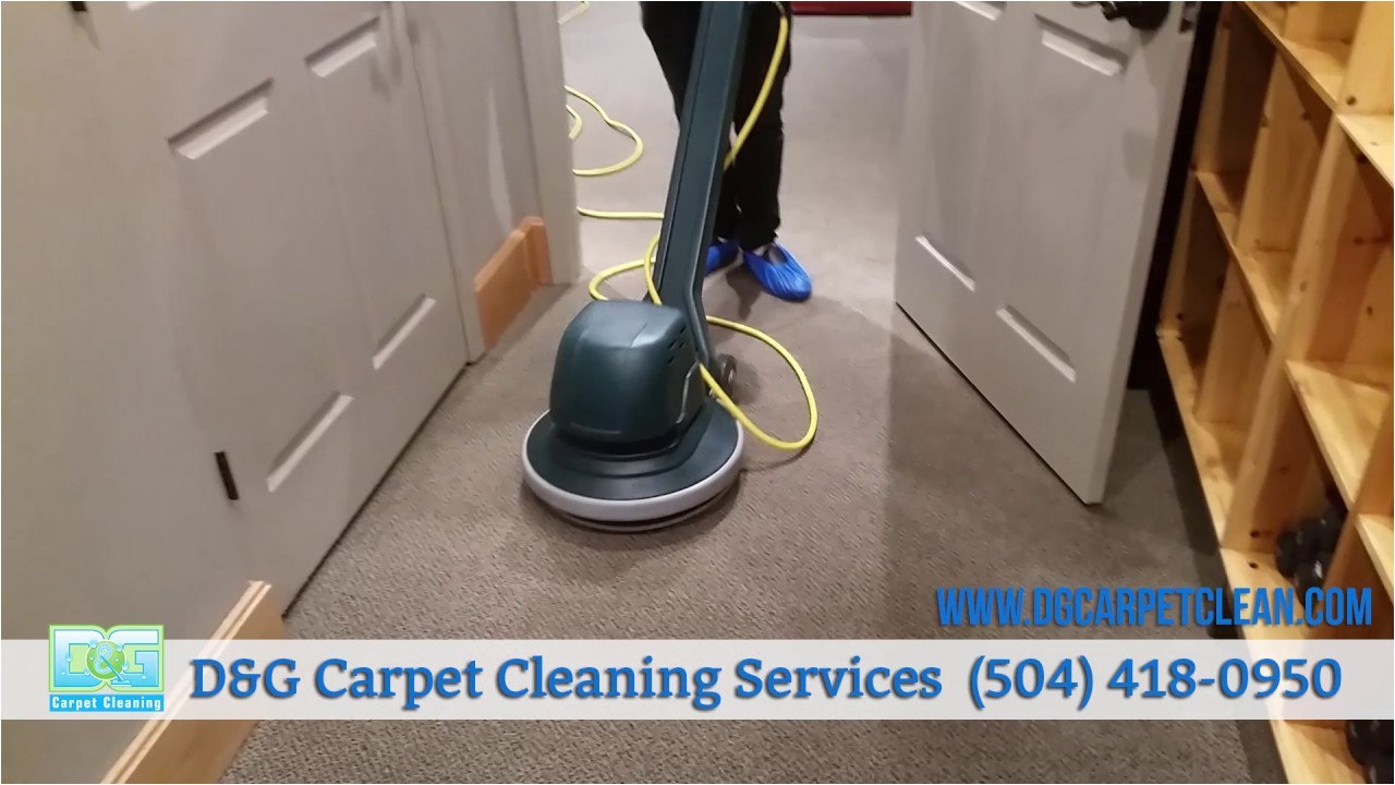 vlm dry commercial carpet cleaning by d g carpet cleaning