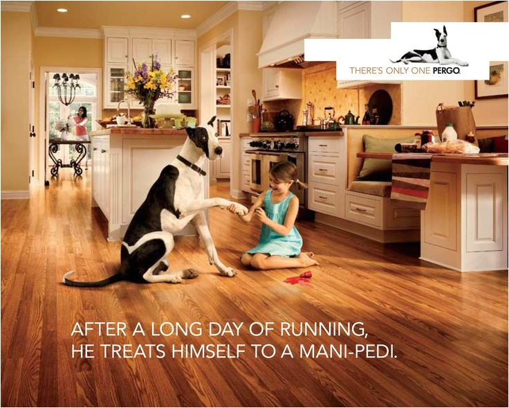 pergo flooring for pets