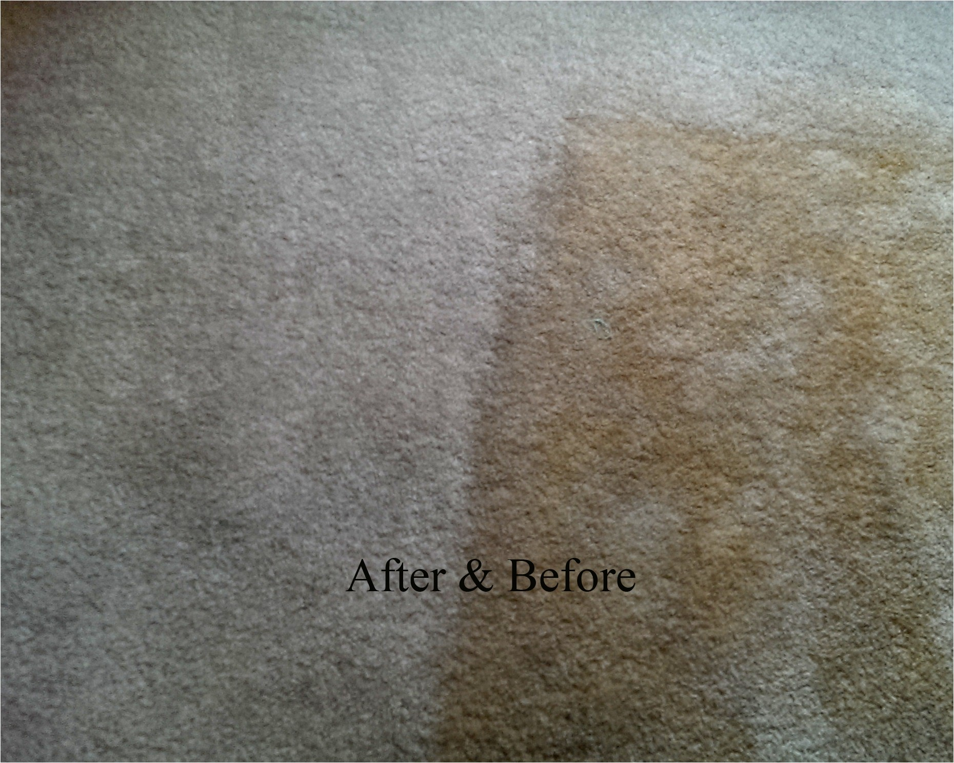 personal touch carpet cleaning 464119519