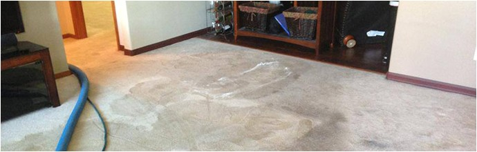 Personal touch Carpet Cleaning Walla Walla Carpet Cleaning Upholstery Cleaning Walla Walla Wa