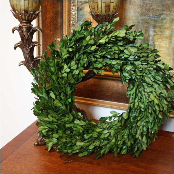 preserved garden boxwood wreath 14