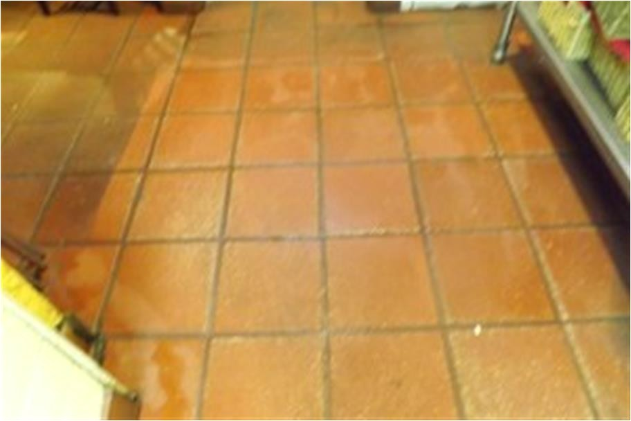 1333388671 amarillo carpet cleaning