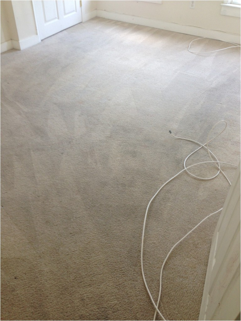 carpet cleaning fredericksburg va