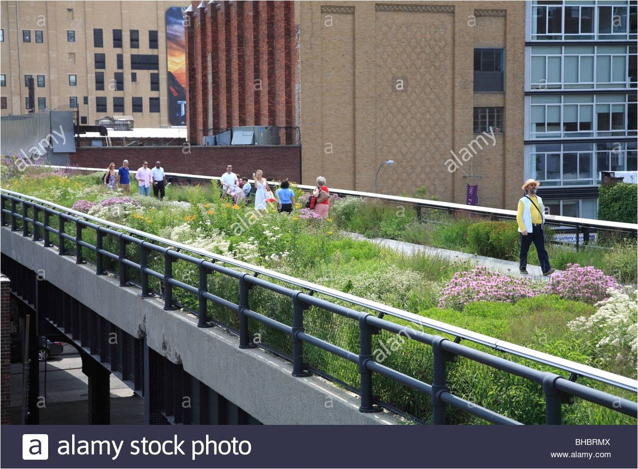 highline elevated public park manhattan new york city