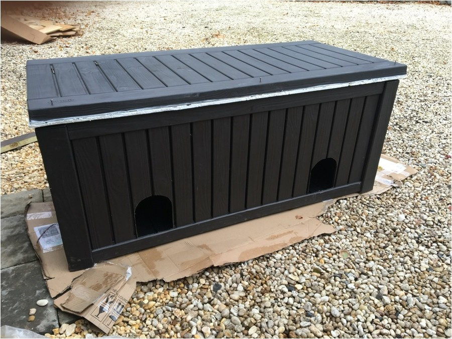 hi help needed please to raccoon proof feeding station for 5 feral kitties 14568