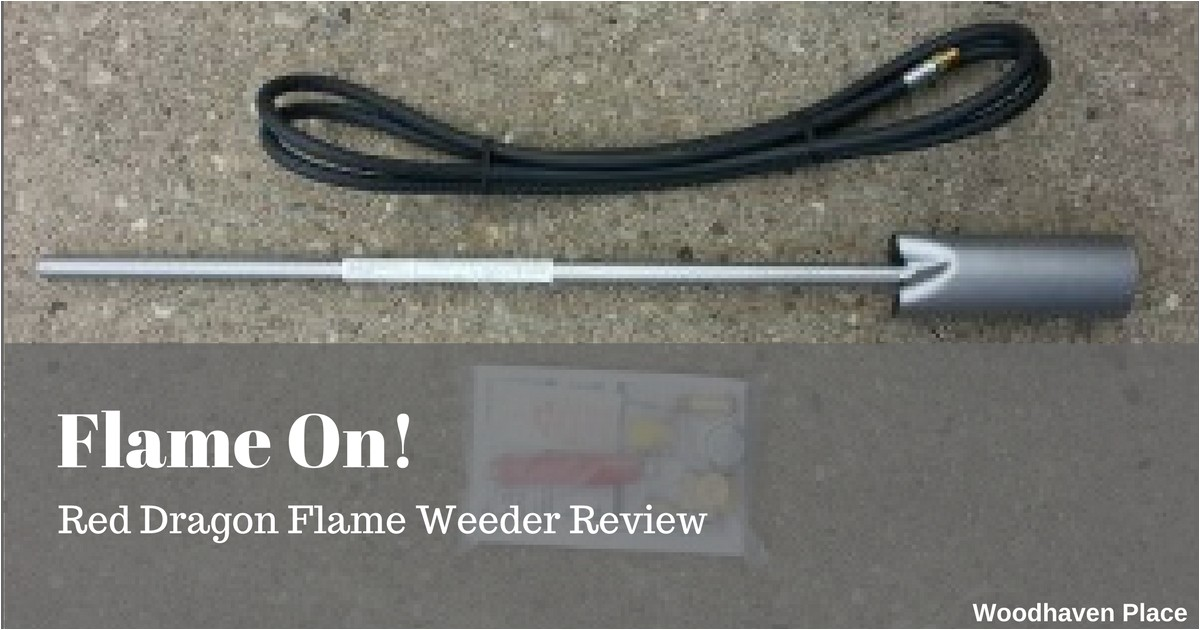 flame on red dragon flame weeder review