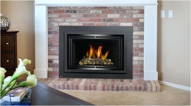Regency Direct Vent Gas Fireplace Reviews Gas Insert Fireplace Reviews Regency Direct Vent Regarding