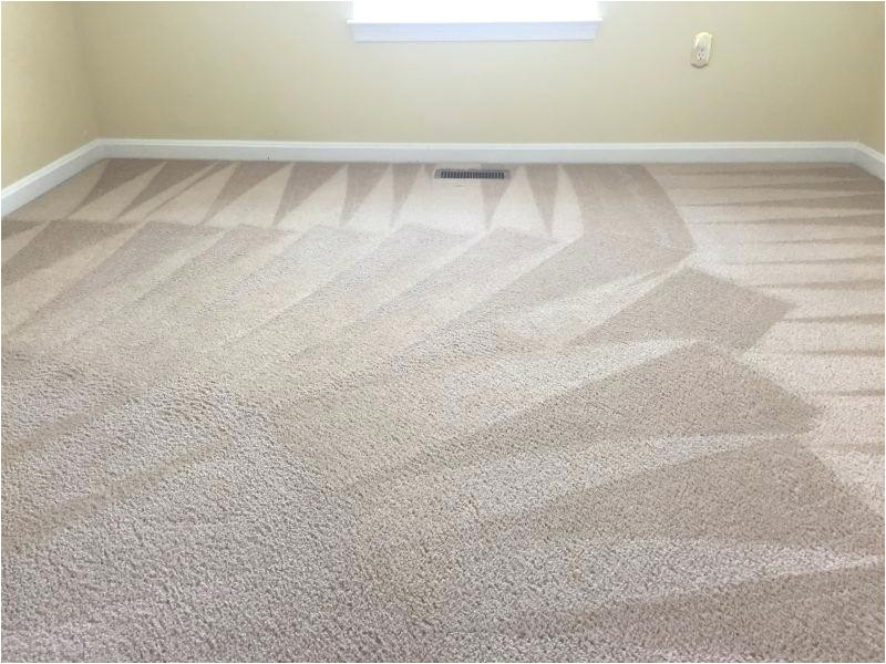 royalty carpet cleaning midlothian va